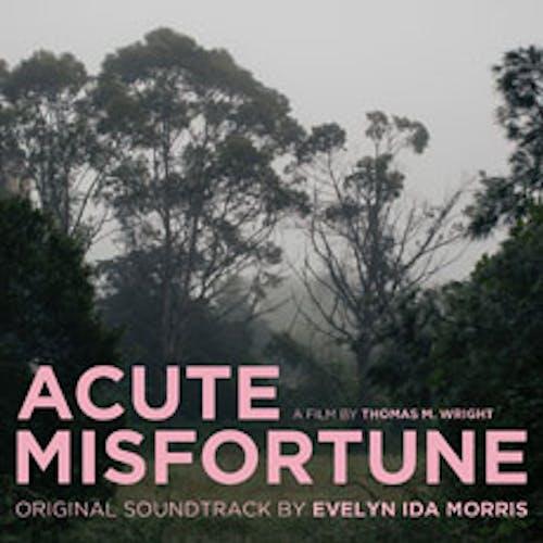 Acute Misfortune (Original Soundtrack)
